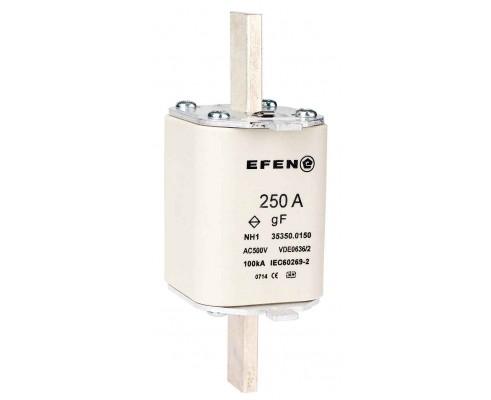 N Wkładka bezpiecznikowa szybka Gr.1 250A AC 500V gF