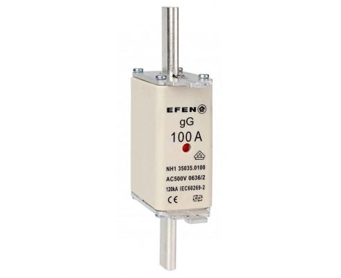 N Wkładka bezpiecznikowa Gr.1C 100A AC 500V gG