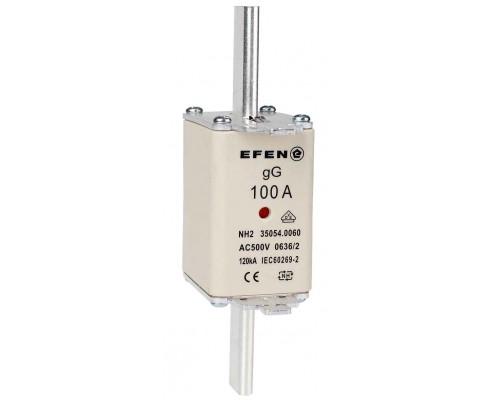 N Wkładka bezpiecznikowa Gr.2C 100A AC 500V gG