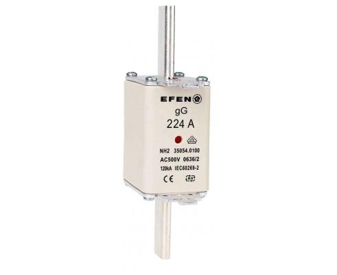 N Wkładka bezpiecznikowa Gr.2C 224A AC 500V gG