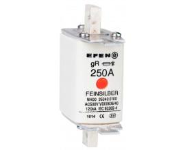 N Wkładka bezpiecznikowa Gr.1 250A AC 500V gR